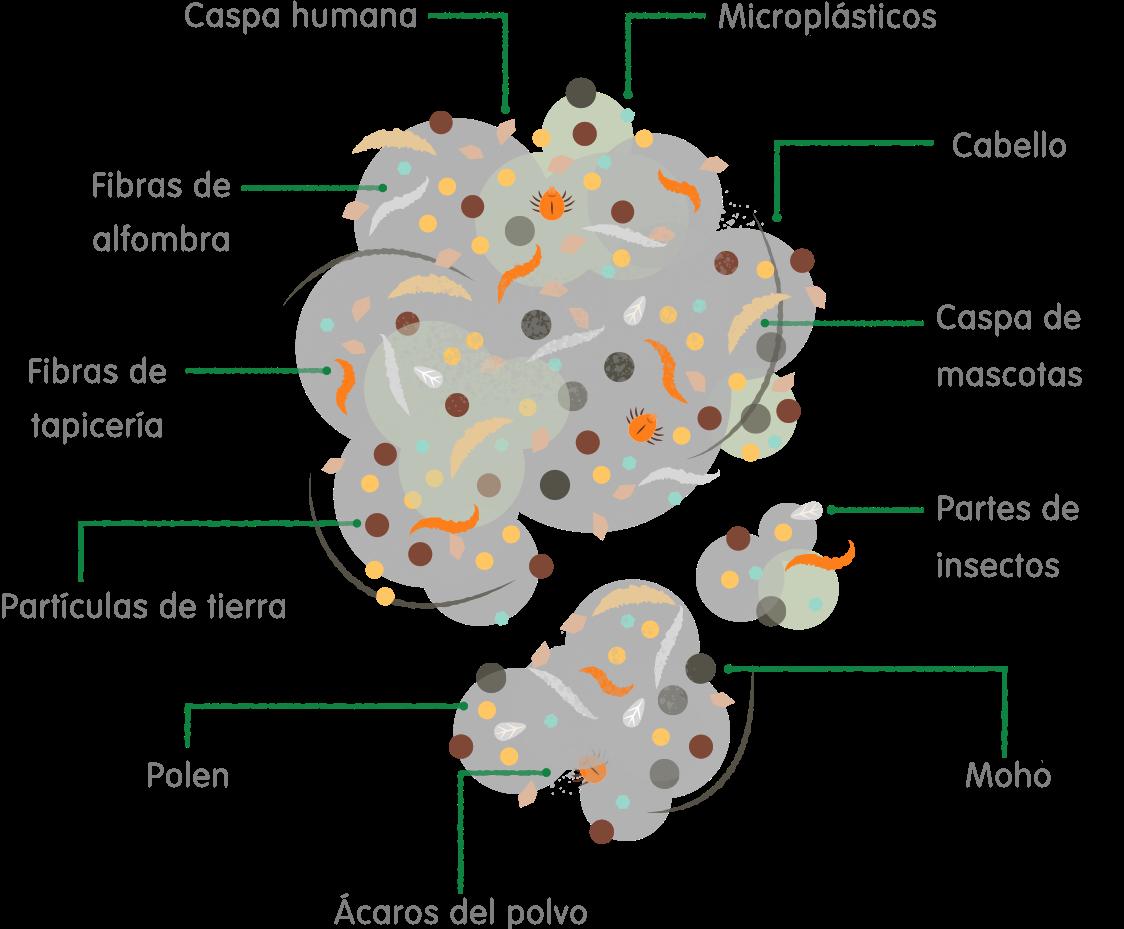 Infografía del polvo
